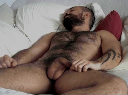 Un homme nu très poilu : 6 octobre 2010