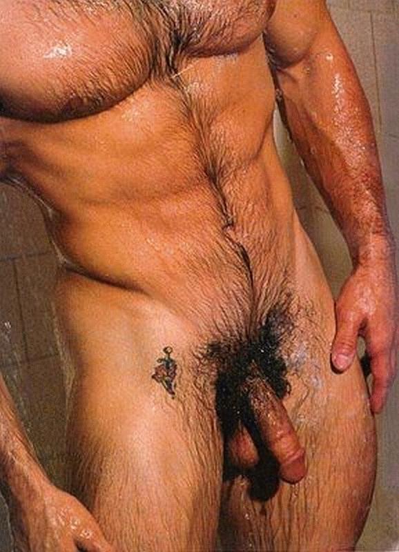 bel homme en erection barbu bouffeur de cul