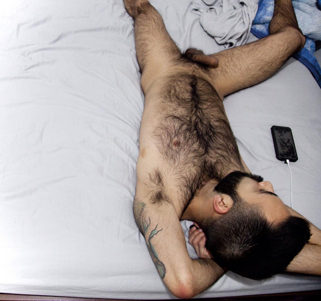 gay torse poilu arabe defoncer