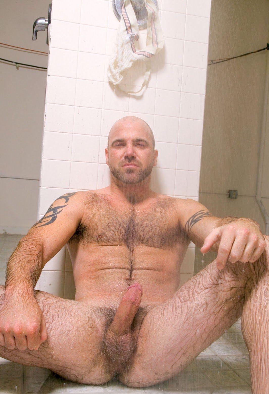 mec gay poilu bel homme en erection