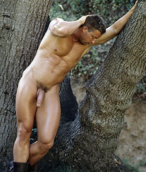 Homme nu dans la forêt